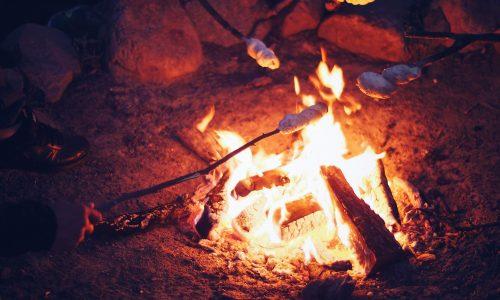 barbecue-bonfire-burn-1251796
